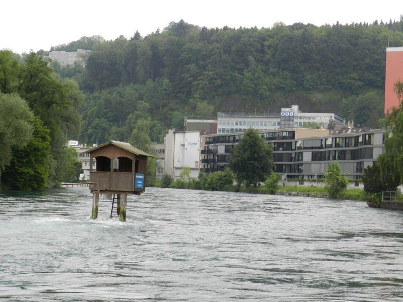 Nur für gute Schwimmer und auf eigenes Risiko: Schwimmen in der Reuss.