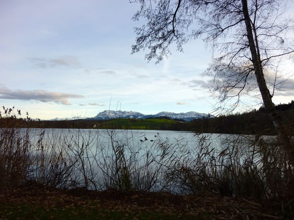 Der Soppensee ist ein Hotspot der Klimageschichte. (© Judith Rickenbach)