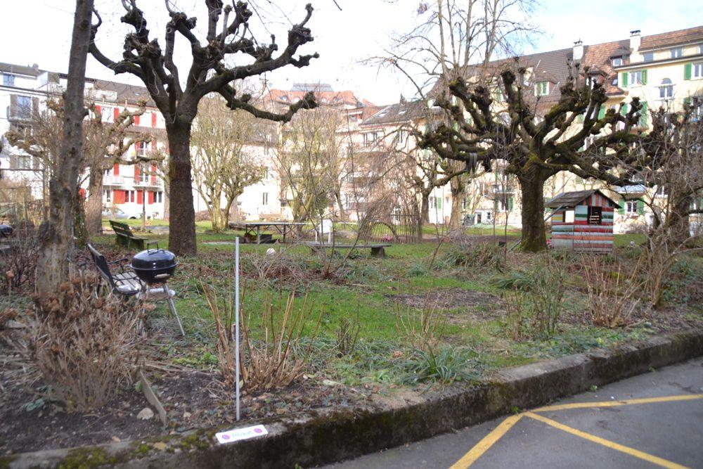 Das Prachtsexemplar und in den Augen von vielen der schönste Innenhof in Luzern: Ecke Moosmatt- und Voltastrasse.