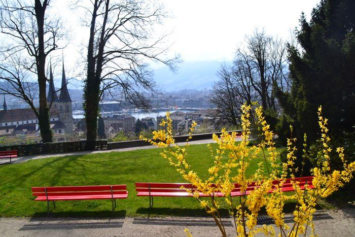 Von der kleinen Oase an der Felsbergstrasse kann man die Rigi und den Pilatus bestaunen.