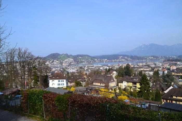 Zwischen dem Gigeliwald und Schrebergärten eröffnet sich ein Ausblick von der Stadt bis zur Rigi.