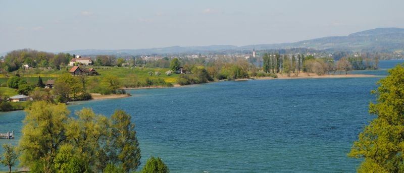 Zwischen Buonas und Hünenberg liegt das Gebiet Dersbach. Hier stellt sich die Frage: Umweltschutz oder öffentlicher Zugang? (Bild: anm)