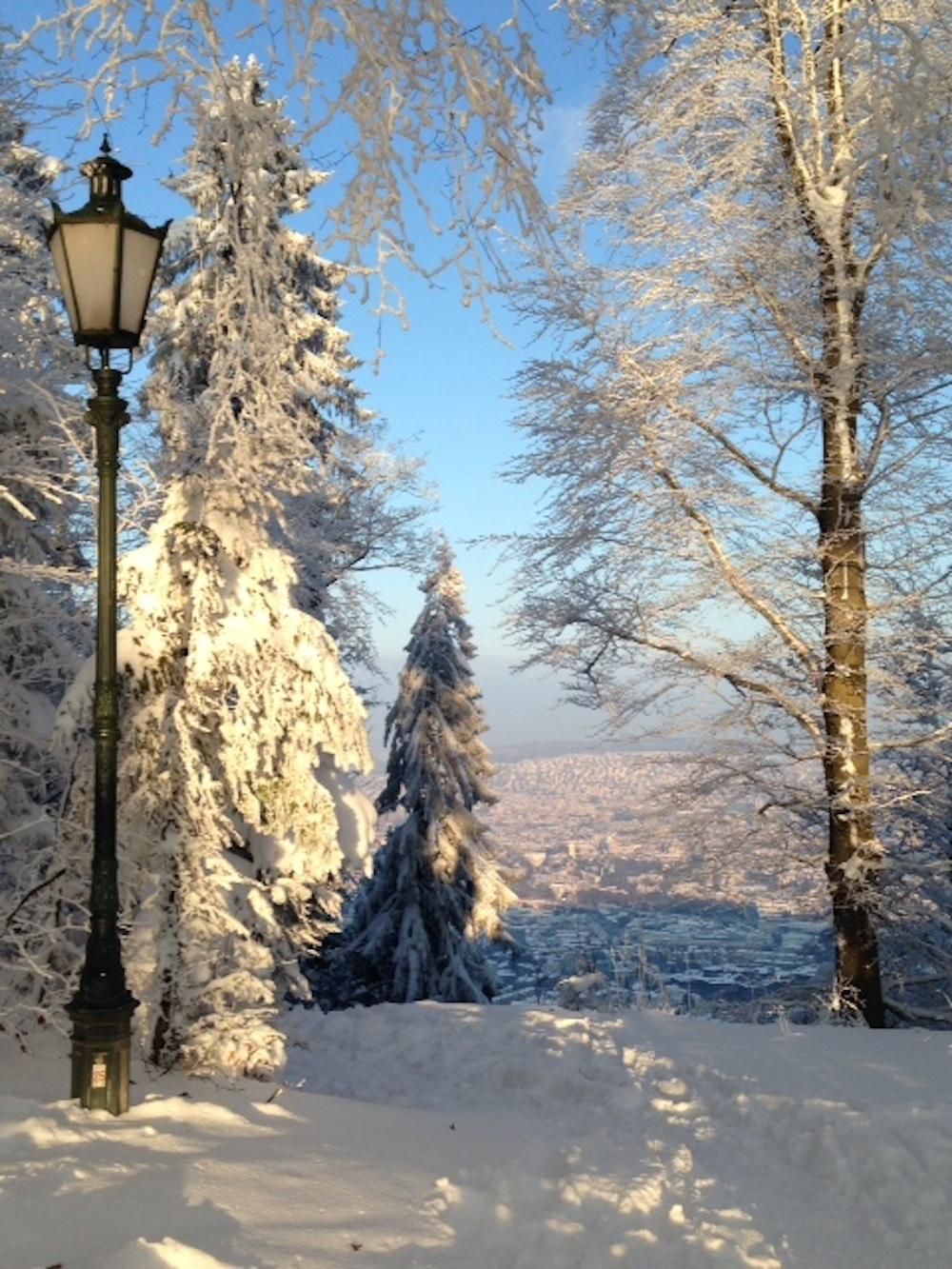 Ein Schneebild mit Ausblick vom Üetliberg, gesendet von Claudia Schäpper.