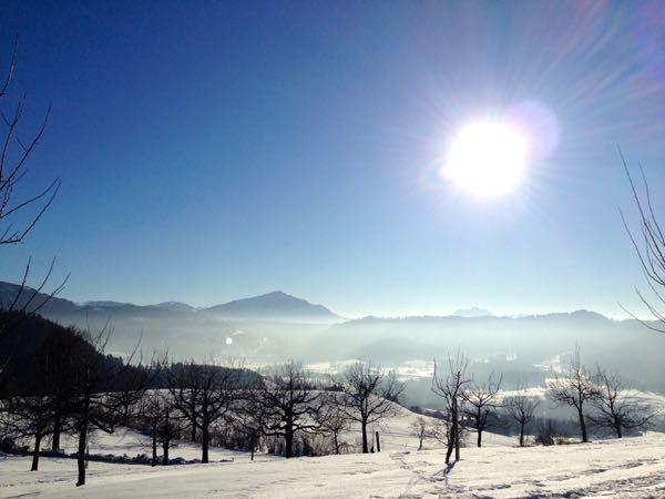 Geniessen Sie die herrliche Sicht auf Rigi und Zugerberg.