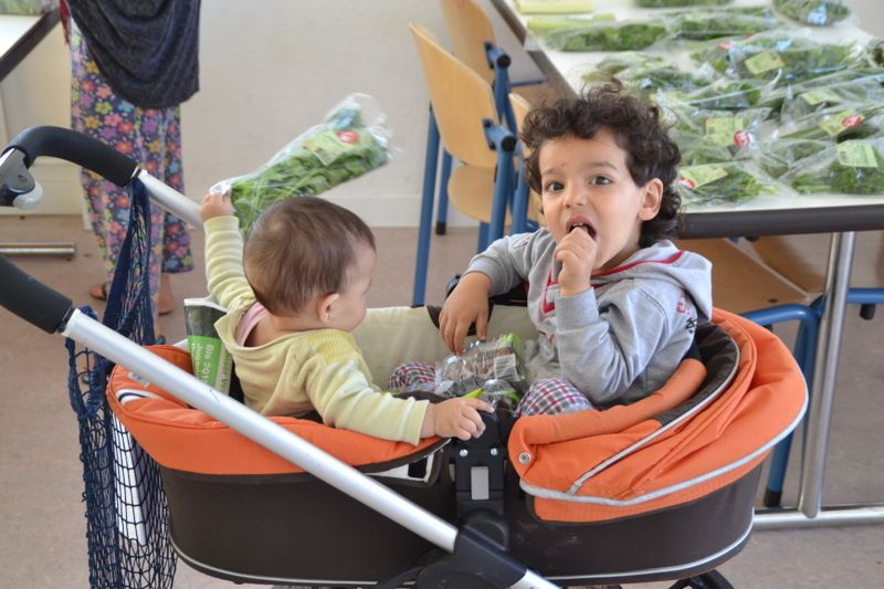 Im Hirschpark leben viele Kinder.