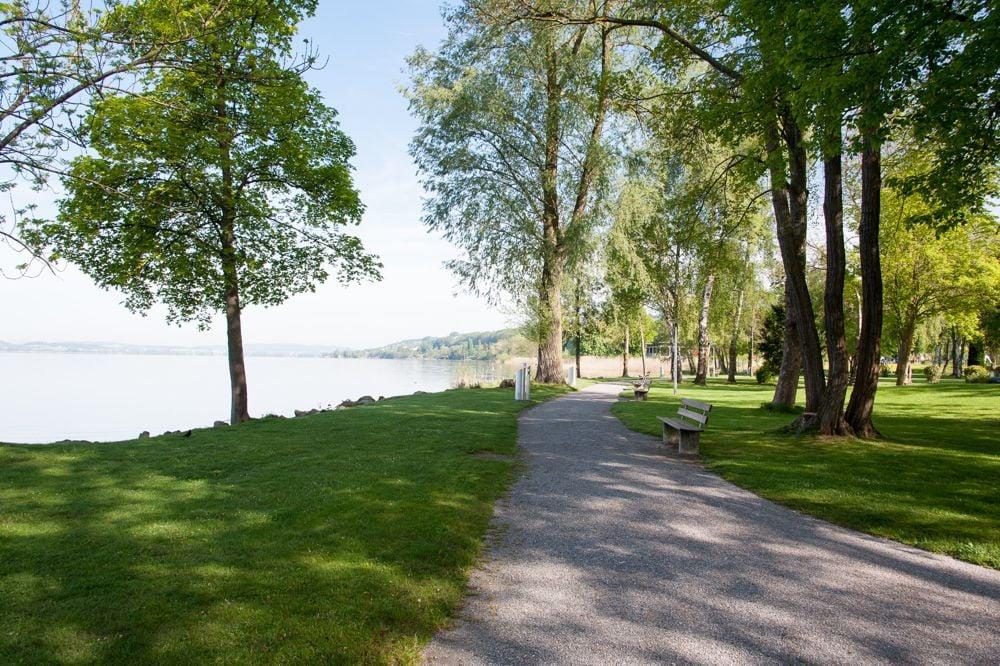 Ein beliebter Ort zum Angeln: Die See-Allee in Sempach.