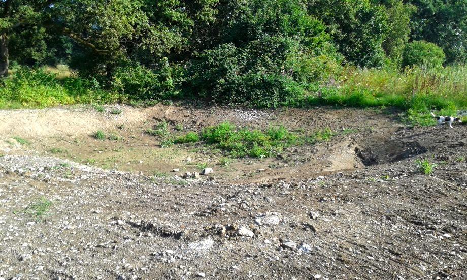 Anstelle von Gewässern findet man auf dem Areal der ehemaligen Schiessanlage eine Kraterlandschaft.