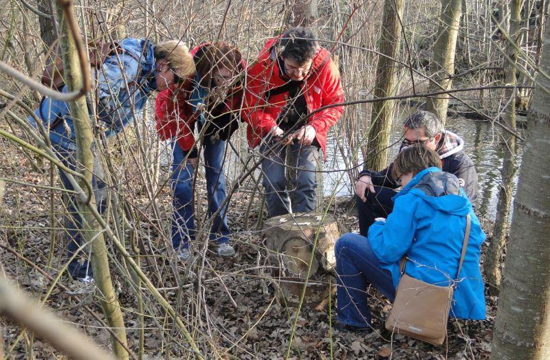 Auf Spurensuche im Wald: Eine Gruppe versucht, ein Rätsel von Swiss Local Travel zu lösen.