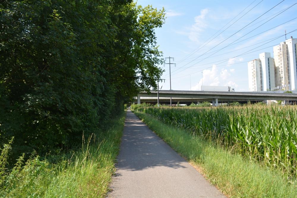 Hier ist es passiert: Dammweg am Ufer der Reuss in Emmen.