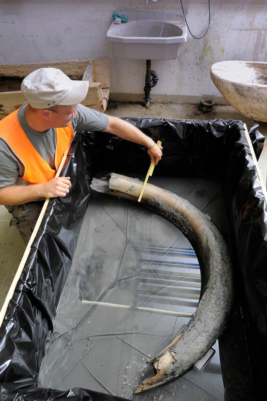Grabungsleiter Jochen Reinhard vermisst den Mammutzahn, der vorläufig im Wasser gelagert wird.