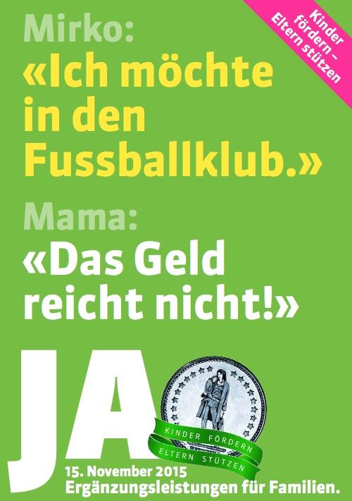 Mit diesem Flyer werben die Grünen für ihre Initiative.