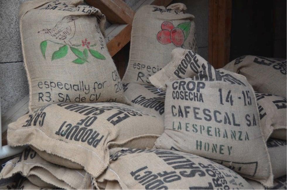 Die «Roasters» in Horw importieren ihren Rohkaffee direkt aus El Salvador (Bild: mag).