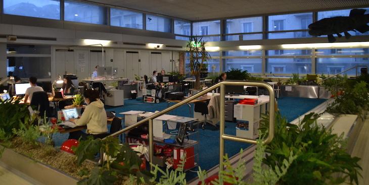 Am wenigsten Arbeit mach den Haustechnikern der Co-Working-Space. «Nur die Pflanzen müssen gegossen werden. Sonst sind sie hier sehr selbstständig», lobt Weibel. (Bild: jav)