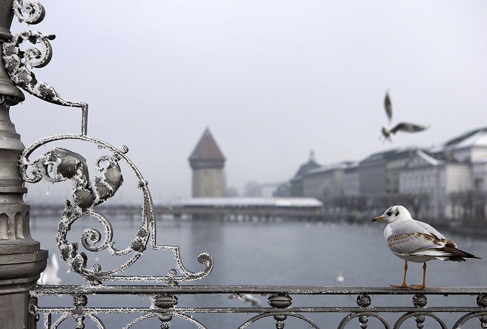 Die Kapellbrücke vom Reusssteg aus fotografiert. (Bild: Gabriel Ammon/AURA)