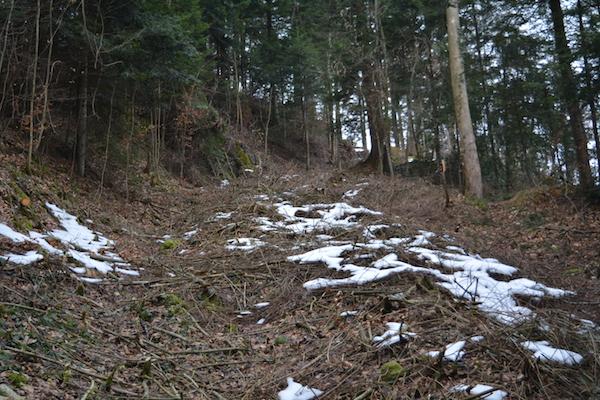 Der Zugerberg-Trail in Entstehung: Hier fahren ab Mai die Mountainbiker durch.