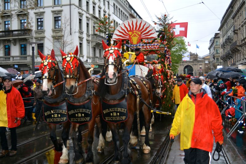 Der prächtige Fritschi-Wagen mit den Eichhof-Pferden.