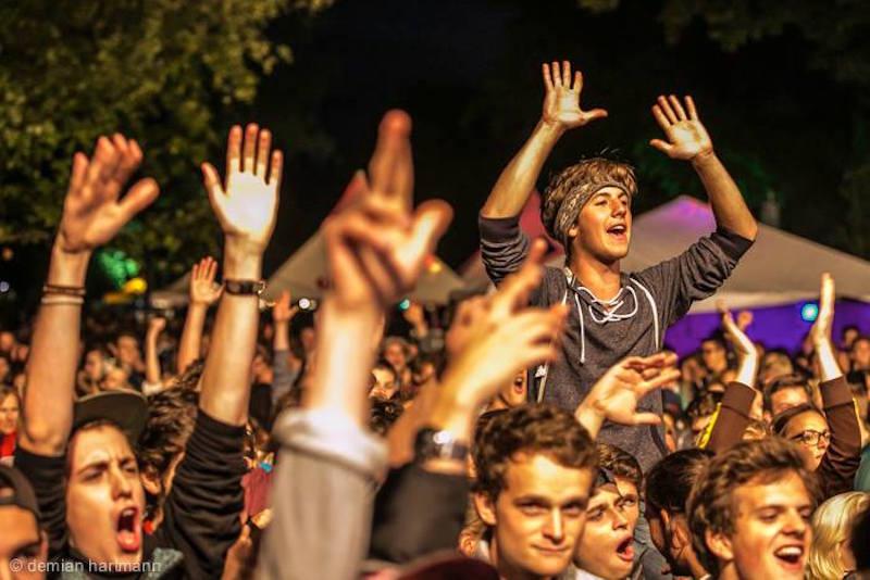 Hände hoch! Feiernde Festivalbesucher 2014.
