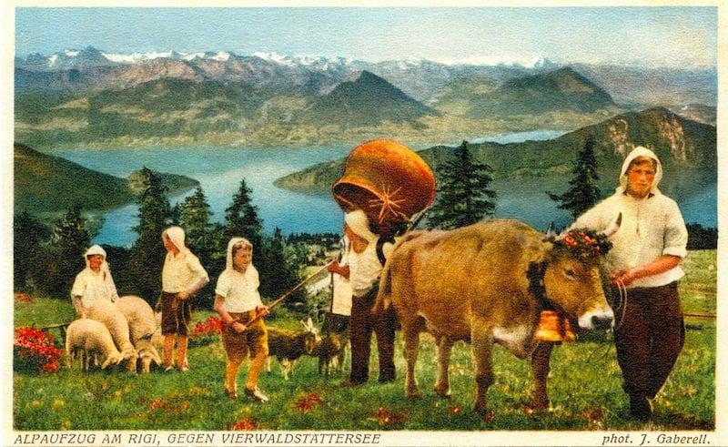 Das Vieh spielte schon immer eine grosse Rolle auf der Rigi (Bild: © Regionalmuseum Vitznau-Rigi)