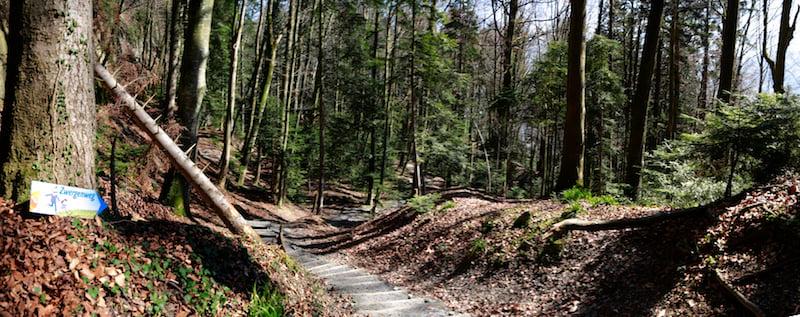 Natur pur in der Wolfsschlucht auf dem Zwergenweg. (Bild: Benedikt Anderes)