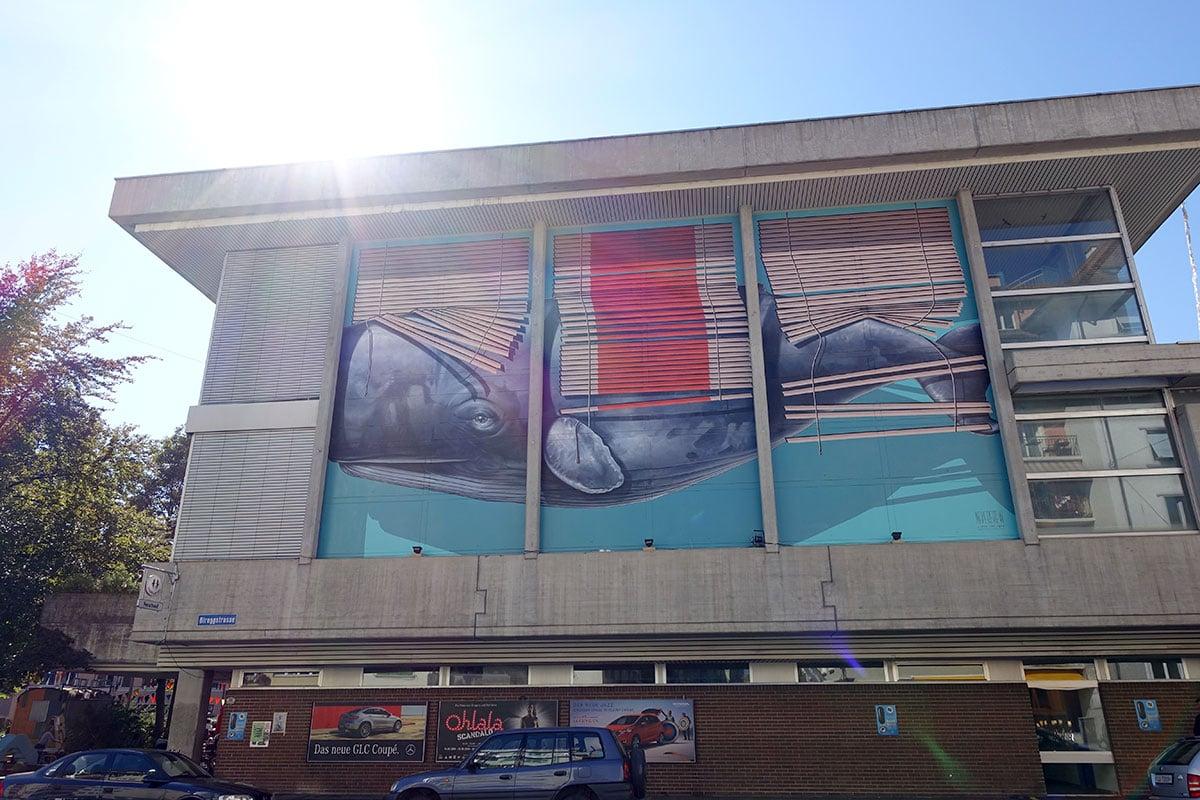 Schon jetzt ein Star: der Wal von Nevercrew an der Neubad-Fassade. (Bild: jwy)