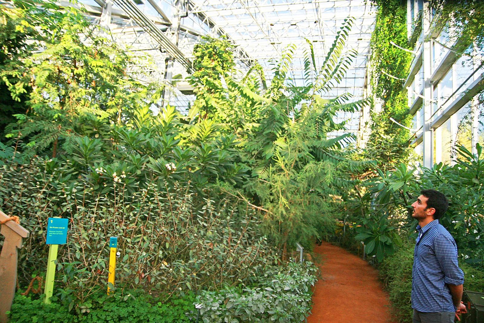 Im Tropenhaus ist Spiritualität und Einklang mit der Natur erlaubt.