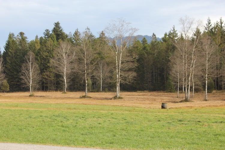 Das Tellenmoos, Moorlandschaft nahe Escholzmatt.