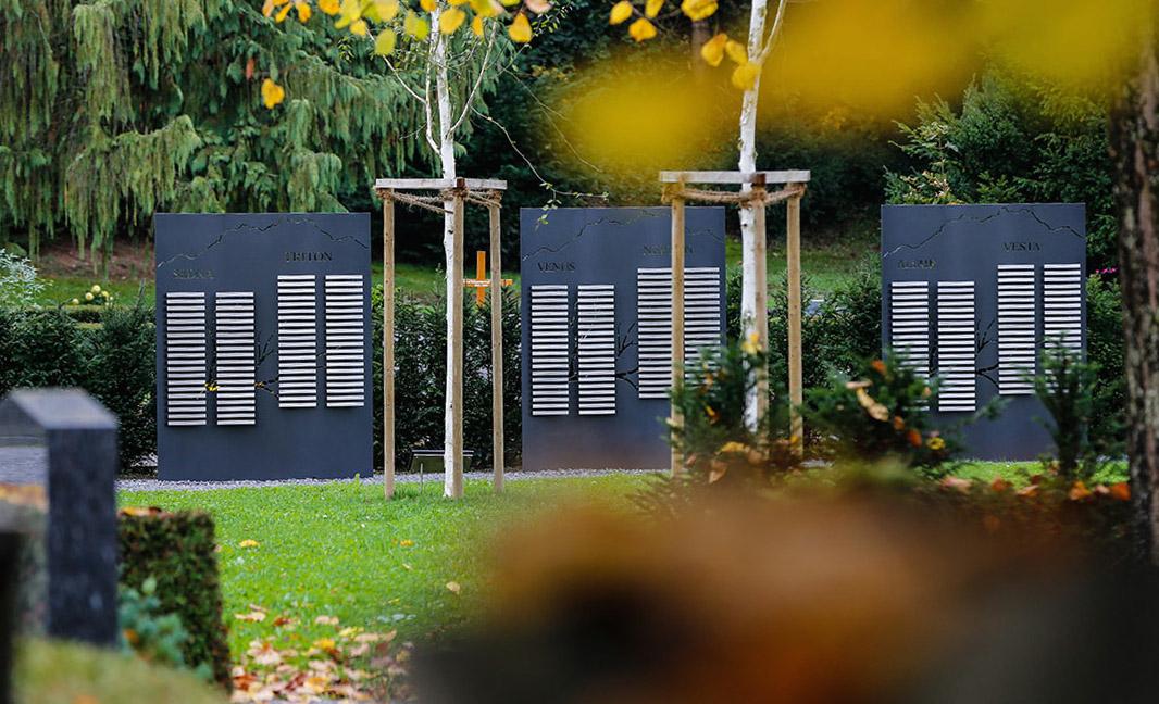 Der Friedhof Anderallmend bietet auch Baumgräber an. (Bild: Benedikt Anderes)