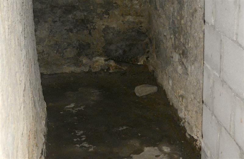 Ein Blick in den Keller zeigt die Feuchtigkeit und das spröde Mauerwerk.