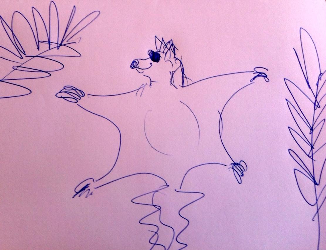 Das Flughörnchen ist das Lieblingstier von Delia Mayer.