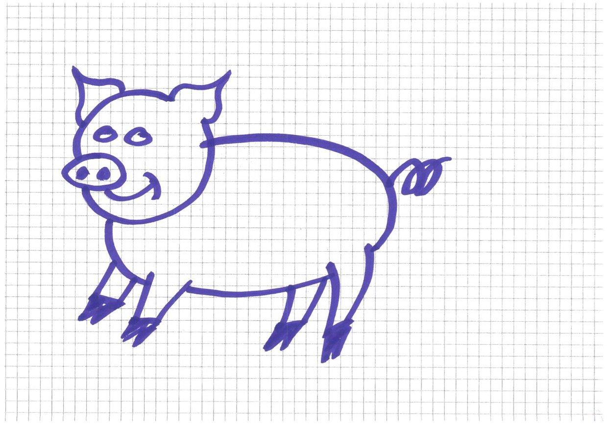 Kann nicht nur rechnen, sondern auch zeichnen: Marcel Schwerzmann's Lieblingstier, ein (Spar-) Schwein.