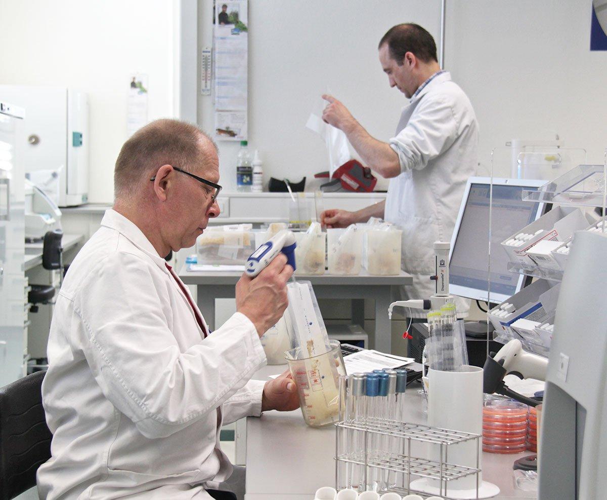 Mitarbeiter der Lebensmittelkontrolle des Kantons Luzern bereiten Lebensmittelproben für die mikrobiologische Untersuchung vor.
