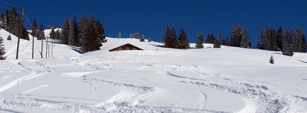 Die Abfahrt nach Illgau ist zwar nicht steil, doch lässt sie durchaus schöne Schwünge im Pulverschnee zu.