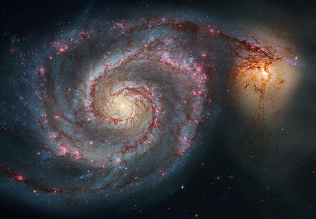«Spacekannibalismus»