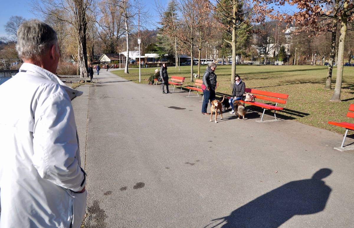 Kurt Imhof zeigt den Wanderweg: Um von der Wiese zum Wasser zu gelangen, müssen die Hunde diese Strasse überqueren.
