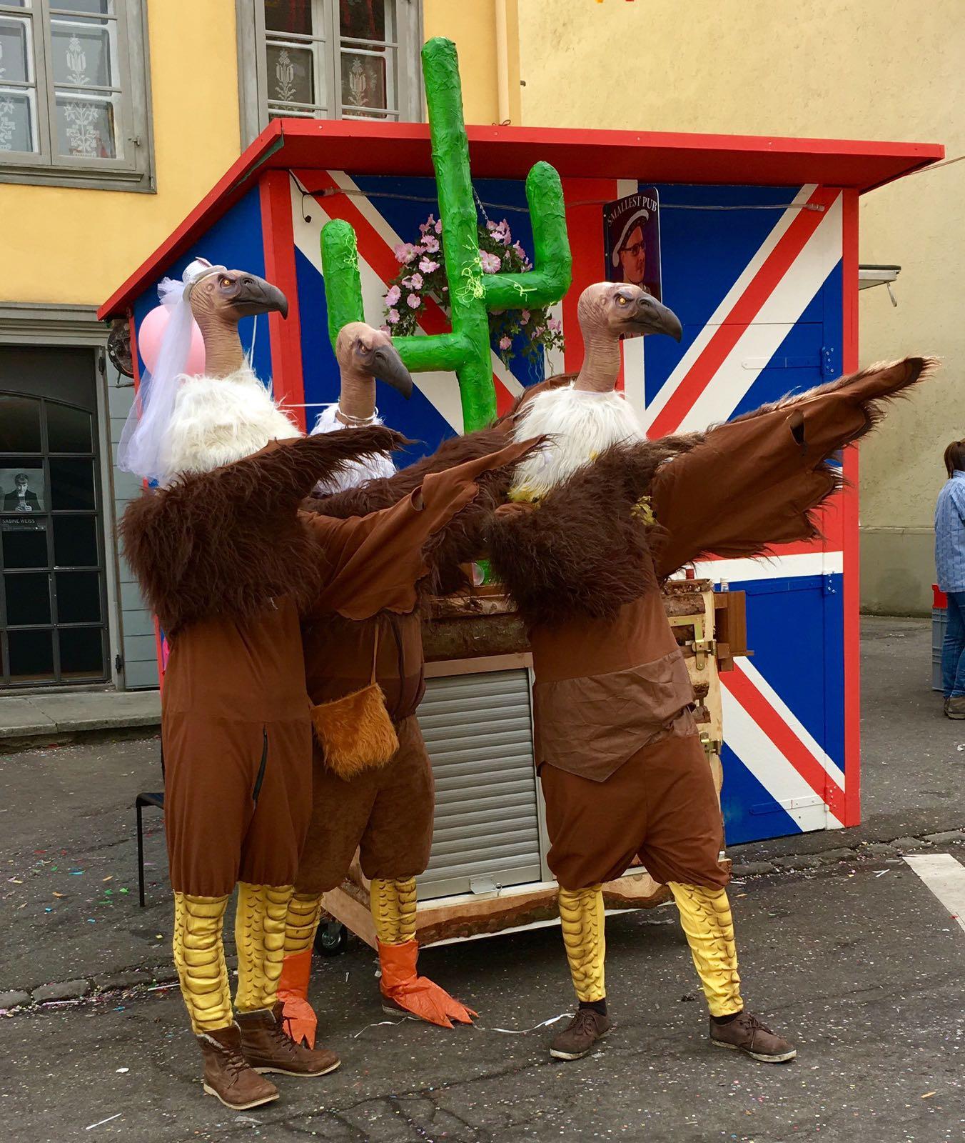 Diese raren Vögel sind in der Stadt selbst nicht zu entdecken, sondern treiben ihr Unwesen in Hochdorf.