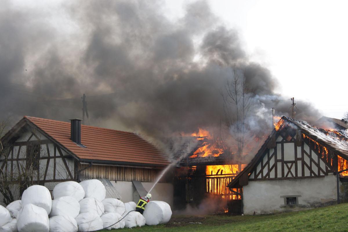 Die Brandursache ist noch unbekannt und wird zurzeit untersucht.