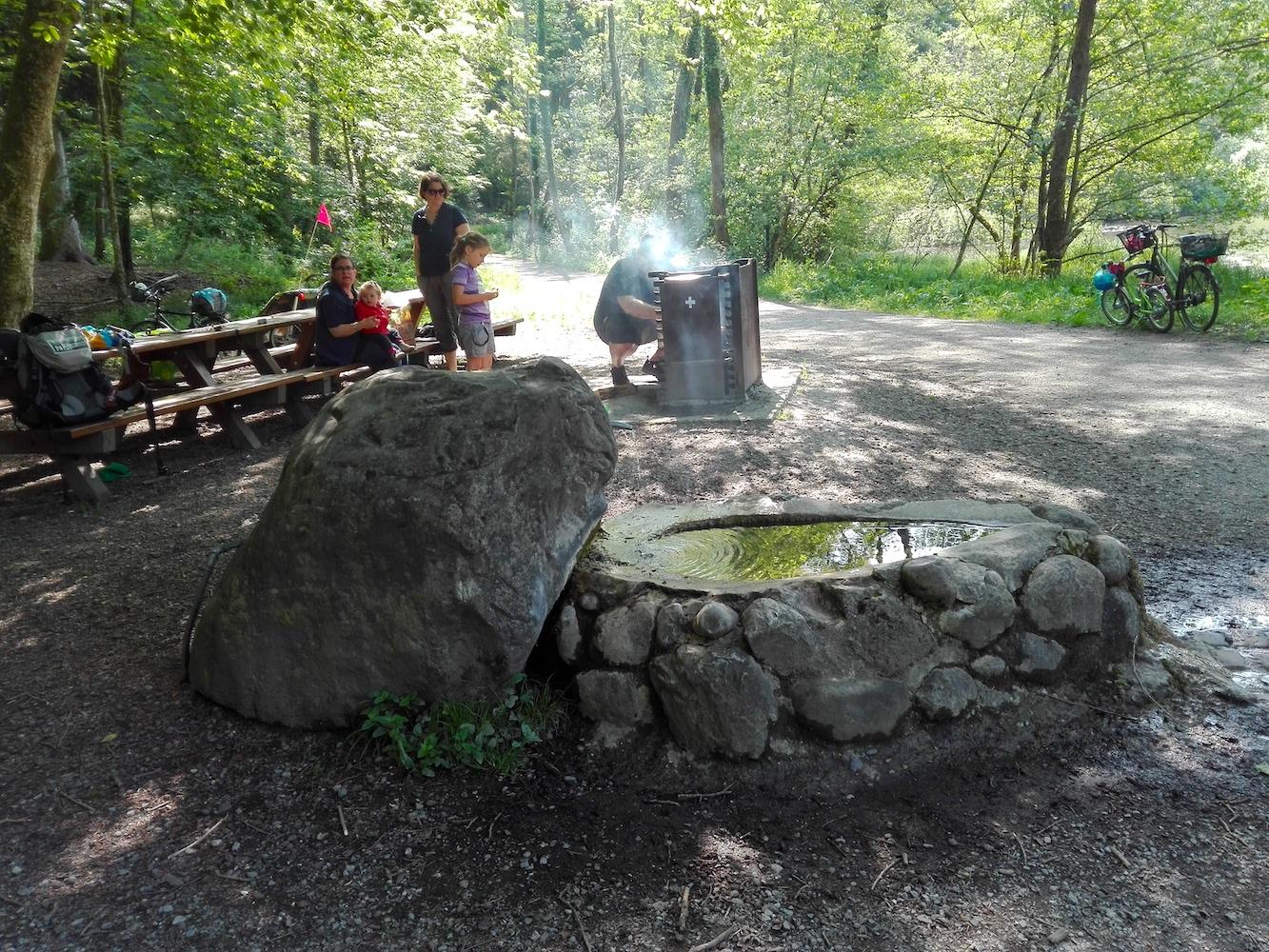 Am Steinhauser Waldweiher.