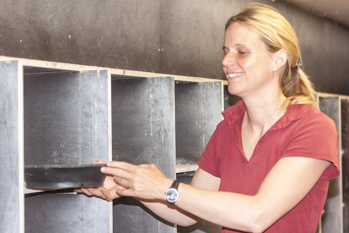 Monika Keller, arbeitet beim städtischen Umweltschutz, hier im Taubenschlag.