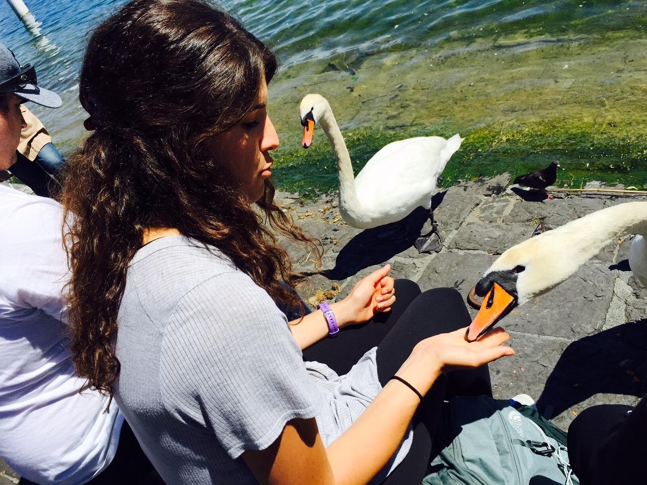 Sarah Johnson aus Texas kennt keine Berührungsängste: «Das sind Königsvögel, oder?»