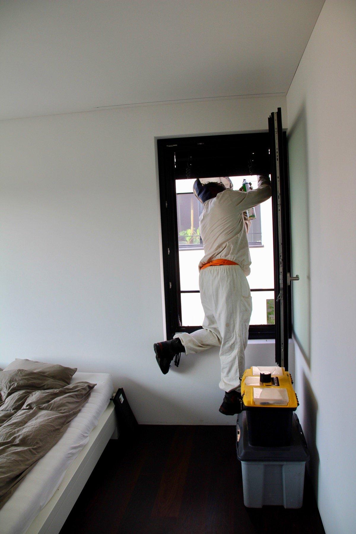 Es empfiehlt sich, als Wespenbekämpfer keine Höhenangst zu haben.