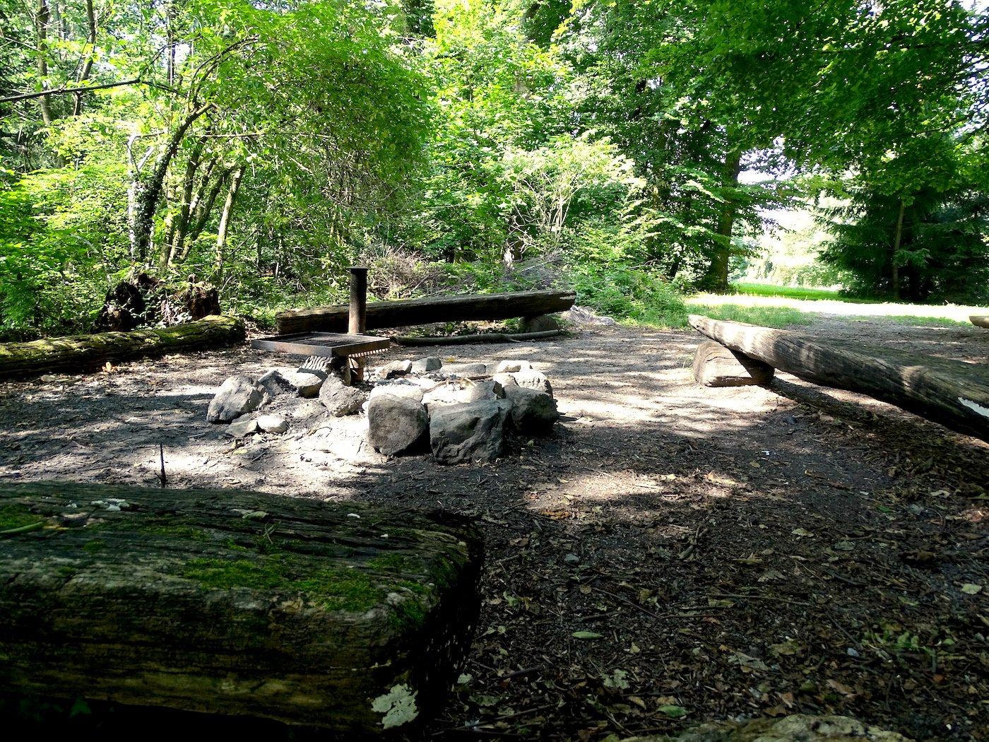 Wer lauscht, hört womöglich noch eine Klaviersonate: Der Platz im Wald direkt beim Dreilindenpark.