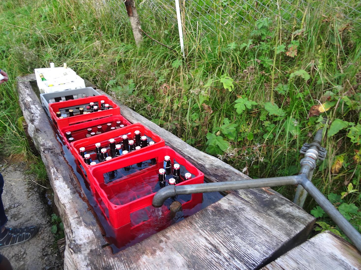 So braucht es keinen Kühlschrank: Bier wird auf dem Zuger Alpli in der Viehtränke gekühlt.