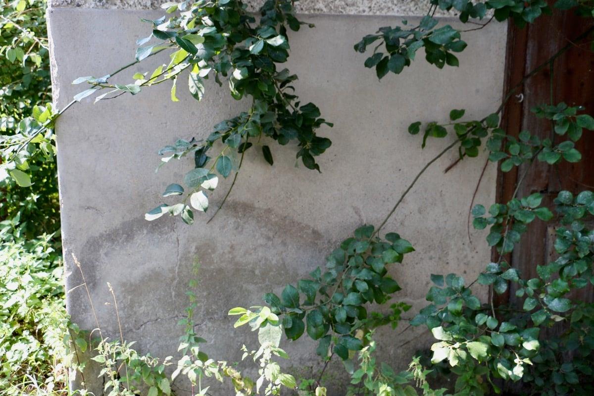 Der Sandstein sauge die ganze Feuchtigkeit auf, erklärt uns Weiss. Entsprechend drückend sei die Luft im Gebäudeinnern oft.