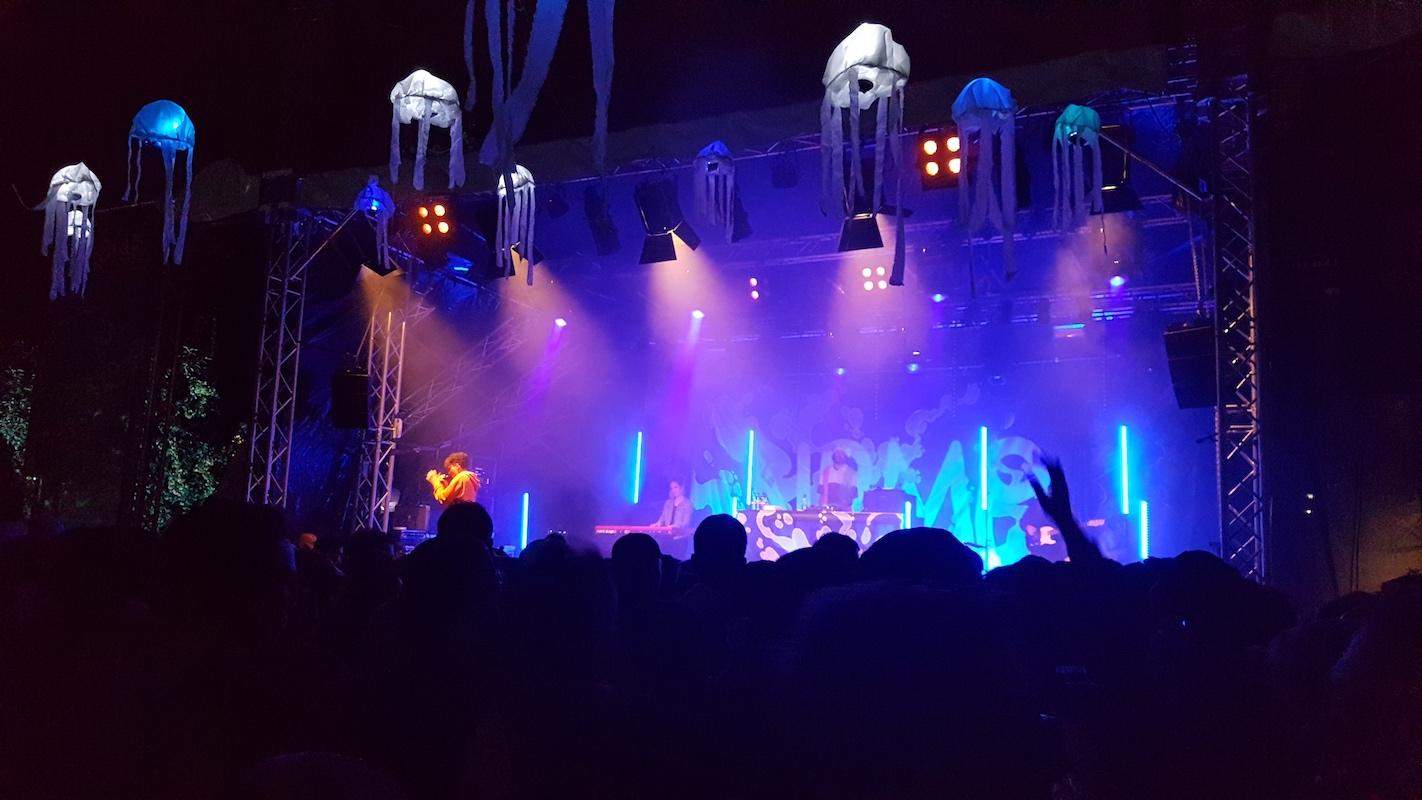 Trotz Regen schöne Stimmung: Nemo spielte am Rock-th-Docks-Festival in Zug.