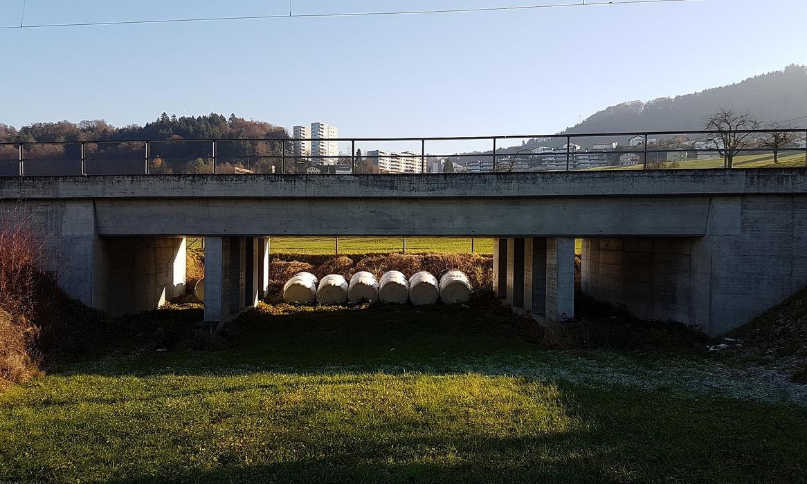 «Heute wohl der teuerste Grasballen-Lagerplatz im Kanton Luzern», schreibt das Komitee auf seiner Webseite zur 2005 erbauten Unterführung.