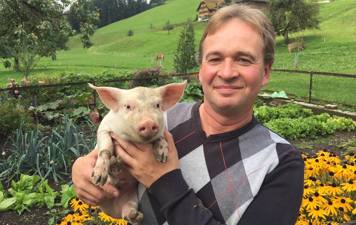 Kann anpacken, aber auch streicheln: Bauer Walter Birrer mit einem seiner Glücksschweine.
