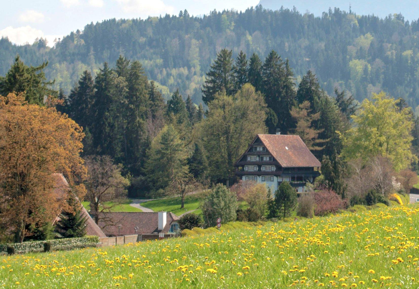 Auf dem idyllisch gelegenen Landgut Aabach lassen die Vasellas bauen.