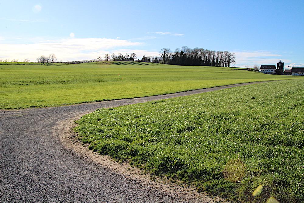 Pf(r)undsland: Dieses Stückchen schönes Land gehört der Katholischen Kirche Cham-Hünenberg.