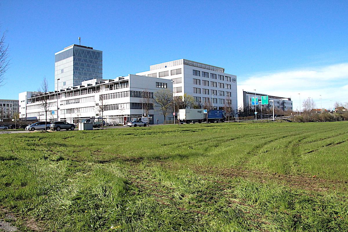 Besonders WM-flexibel: Roche Diagnostics in Rotkreuz. Zum Achtelfinale gibt es sogar ein firmeneigenes Public Viewing.