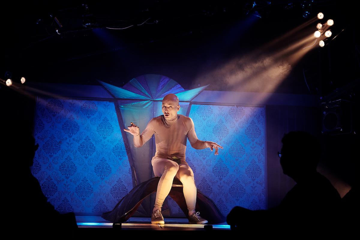 Adamo die Schildkröte (hier ohne Schild) hat sich über die Jahre zum Publikumsliebling gemausert.
